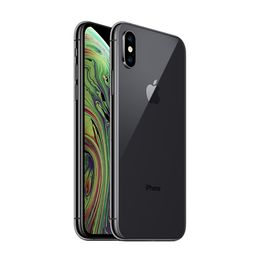 FAMILY|iphonexs 5 pollici Grigio siderale