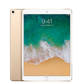 iPad Pro 2nd generation Gold