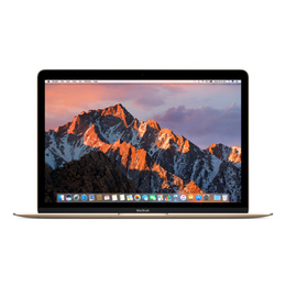 MacBook 06/2017 Goud